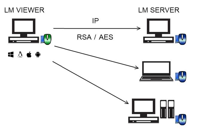 https://www.litemanager.ru/img/scheme/11_Direct_IP.jpg